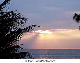 Romantic tropical sea - Coconut palm tree silhouette against...