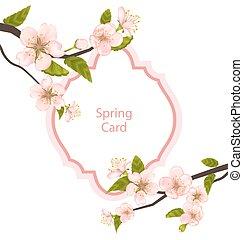 romanticos, primavera, cartão, com, florescer, filiais árvore