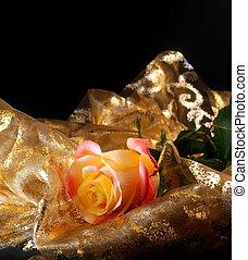 romantik with yellow rose