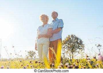 romantikus, öregedő összekapcsol, élvez, egészség, és, természet, alatt, egy, napos, akkor