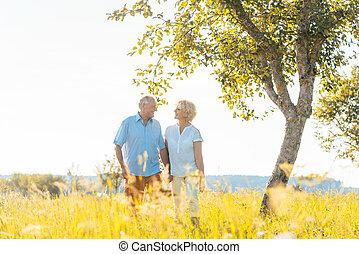 romantikus, senior összekapcsol, hatalom kezezés, jár, együtt, alatt, egy, mező