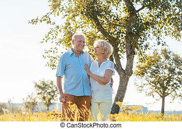 romantikus, senior összekapcsol, hatalom kezezés, jár, együtt, környék