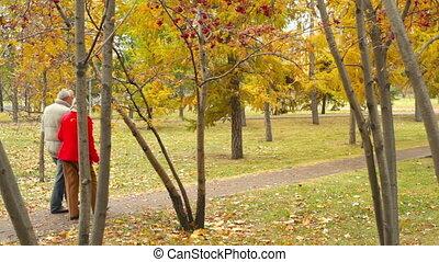 romantique, automne