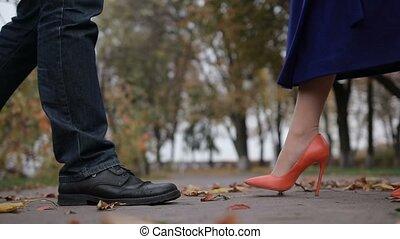 romantique coupler, jeune, automne, doux, baiser, jour