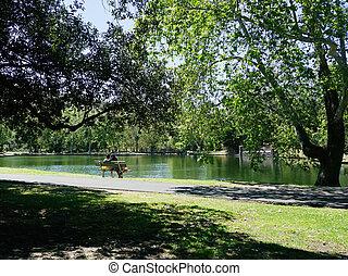 romantique, lakeside, derrière, couple, jeune, banc, vue, séance