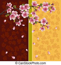 romantische, kers, -, japanner, boompje, sakura, achtergrond
