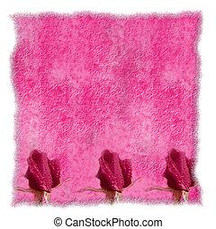 romantische, perkament, roze