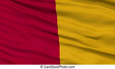 Rome City Close Up Waving Flag