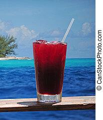 ron, bebida, puñetazo, sabroso, paraíso tropical, o