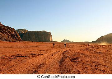 ron, wadi, paisaje del desierto