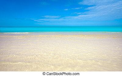 roo, isla,  México,  holbox,  quintana, playa