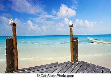 roo, isla,  México,  tropical,  holbox,  quintana