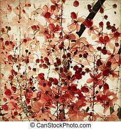 rood, blossom , afdrukken, op, geribd, bamboe, achtergrond