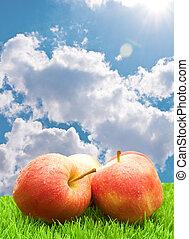 rood, gras, appeltjes