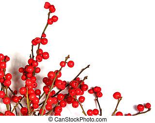 rood, kerstmis, besjes, op wit, 1