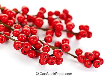 rood, kerstmis, besjes