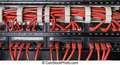 rood, netwerk, kabels, samenhangend, om te, switch