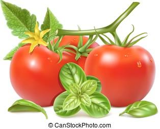 rood, rijpe tomaten