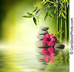 rood, stenen, hibiscus, bamboe