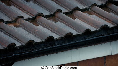 Roof And Gutter In Heavy Rainfall - Gutter in stormy weather...