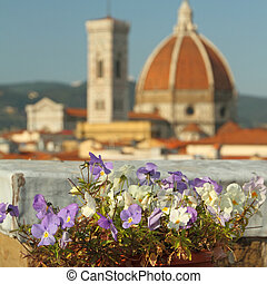 roof garden with view of cathedral of Florence, Italy