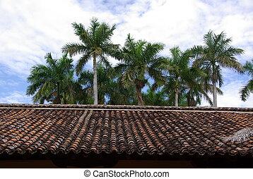 Roof in Granada, Nicaragua