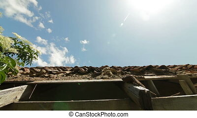 Roof of abandoned farmhouse