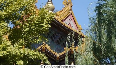 roof of Forbidden City palace.Crown of ginkgo tree &...