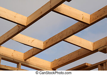 Roof Studs - Bare roofing studs make a pleasing pattern...