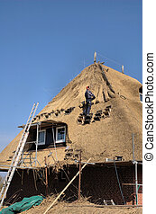 Roof thatching2 - Man renewing roof