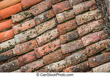 Roof tiles on an old building