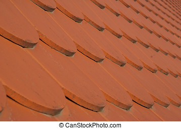 Roof tiles on Spilberk, Brno, Czech Republic