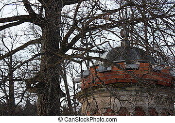Roof under the tree