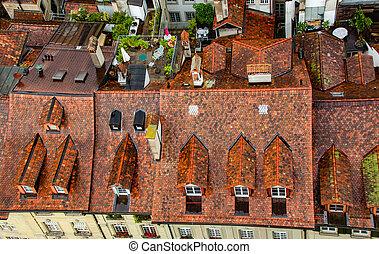 Roof view of housing in Bern Switzerland.