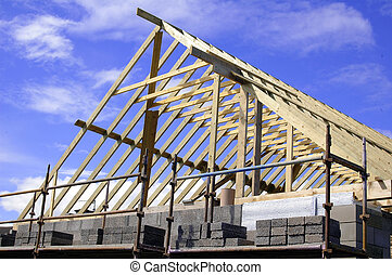 Roofing - Timber roof frame