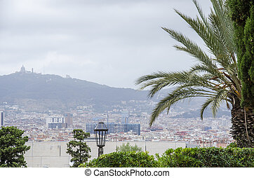 Roofs of Barcelona and a palm tree on a front. Piece of the city of Barcelona seen from above shows architecture of a general air view in a summer day. Catalonia, Spain.