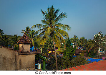 Roofs of houses and palm trees
