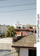 rooftop view retail stores hotels  downtown San Andres Island town Colombia South America with palm coconut tree