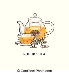 Rooibos tea drawing - glass teapot and teacup filled with ...