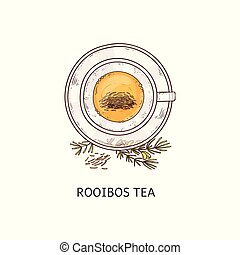 Rooibos tea in glass cup drawing seen from top overhead view...