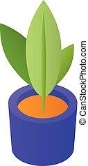Room houseplant icon, isometric style