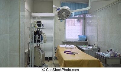 room., vétérinaire, opération