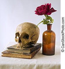 roos, boekjes , oud, schedel