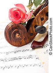 roos, boog, viool, afsluiten, boekrol, rood, aanzicht