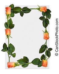 roos, frame, 2