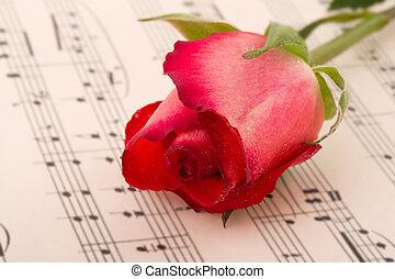roos, het blad van de muziek
