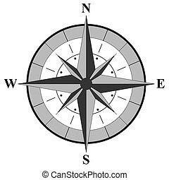 roos, illustratie, kompas