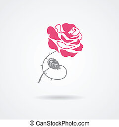 roos, symbool, vrijstaand, op wit, achtergrond