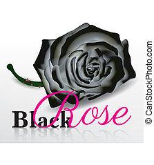 roos, witte , vector, zwarte achtergrond