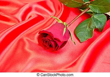 roos, zijde, rood